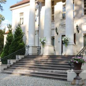 Pałac Tłokinia – dekoracja wejścia