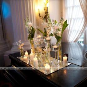 Pałac w Rydzynie – aranżacja na fortepianie