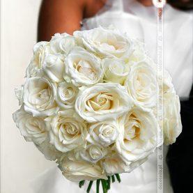 Klasyczne białe róże